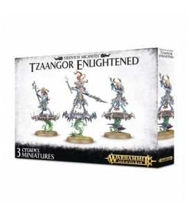 Warhammer Age of Sigmar: TZEENTCH ARCANITES TZAANGOR ENLIGHTENED