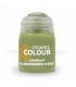 Citadel Colour: Contrast - Plaguebearer Flesh